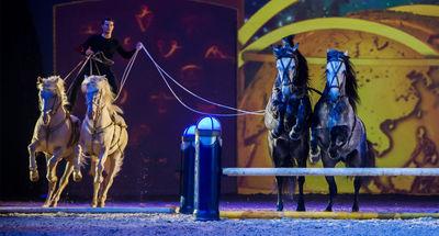 """Laury Tisseur in """"Die goldene Spur"""" 2014-2015"""