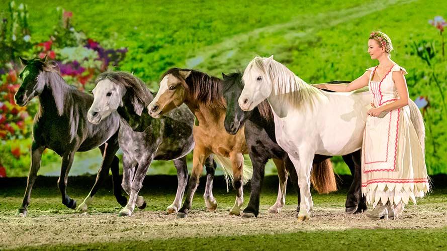 """Freiheitsdressur mit Ponys bei APASSIONATA – """"Im Bann des Spiegels"""""""